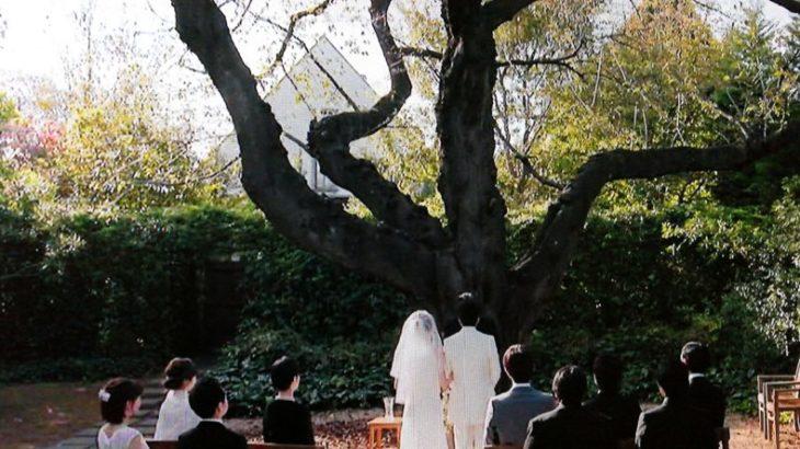 『大恋愛』第5話/結婚式場ロケ地・ウエディングドレスブランドは?戸田恵梨香着用